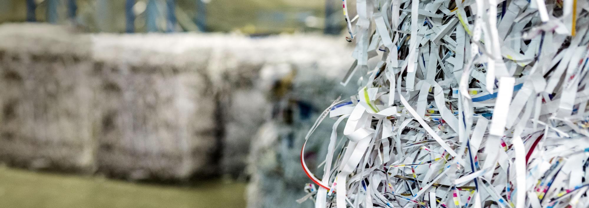Impression sur papier recyclé : Commençons par le commencement : qu'est-ce que le papier ?