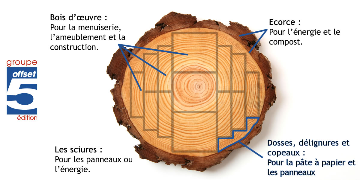 part-du-bois-utilisee-dans-la-production-de-fibre-vierge